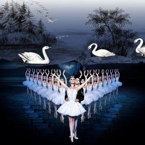 swan-lake-movie-and-lake-for-swan